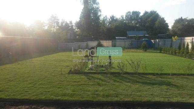 Озеленение участка в Одинцовском районе